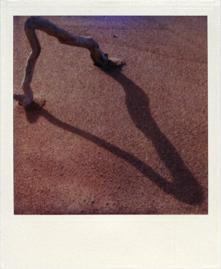 polaroid_18