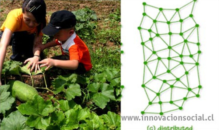 blog-10_0-sustainable-networks_web